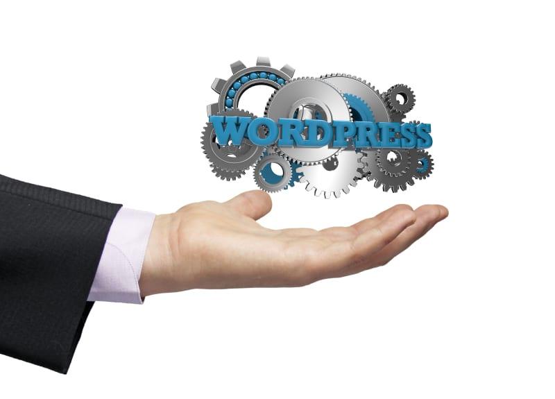 Wordpress, Building a website