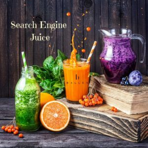 Search Engine Juice