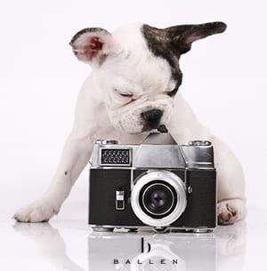DogWithCamera