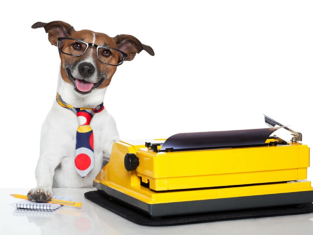 Cute little dog with a typewriter for blog writing.