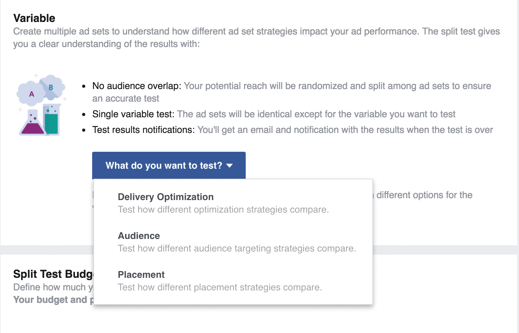 Facebook Ad Split Testing Variables with list of Variables