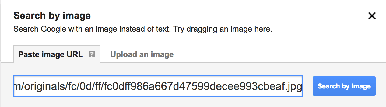 Using Google Image Search to find a picture by copy and pasting the URL of picture you want to search by