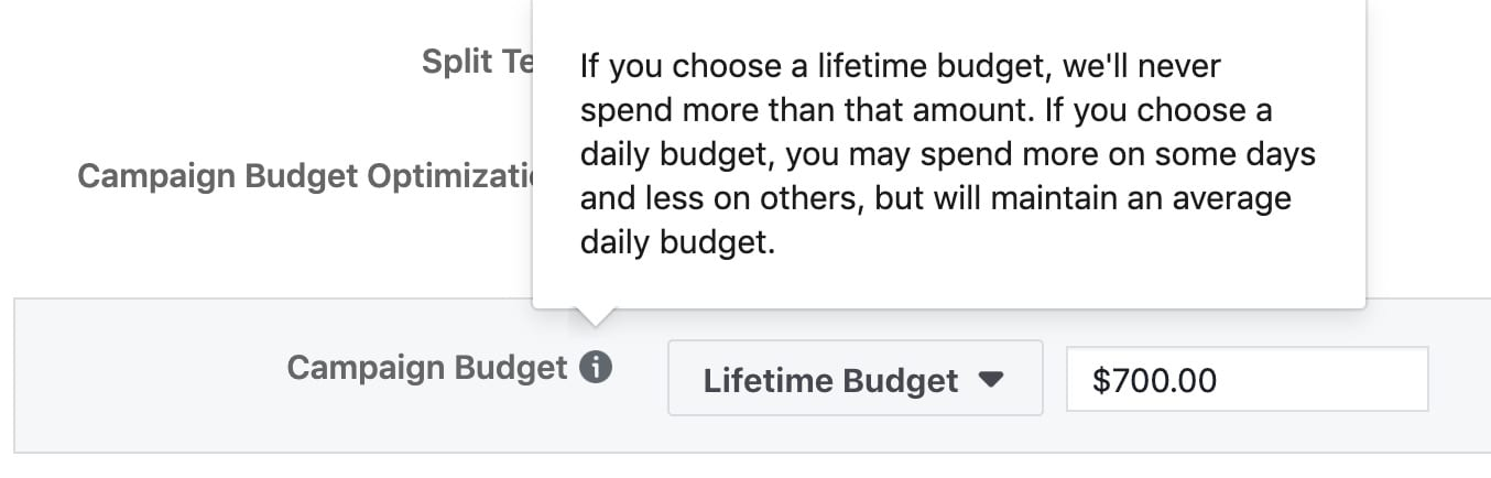 Campaign budget optimization will distribute your budget across ad sets to get more results depending on your delivery optimization choices and bid strategy. You can control spending on each ad set.