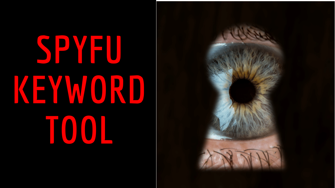 Spyfuis a keyword competition toolthat allows you togain the upper hand in online marketing.