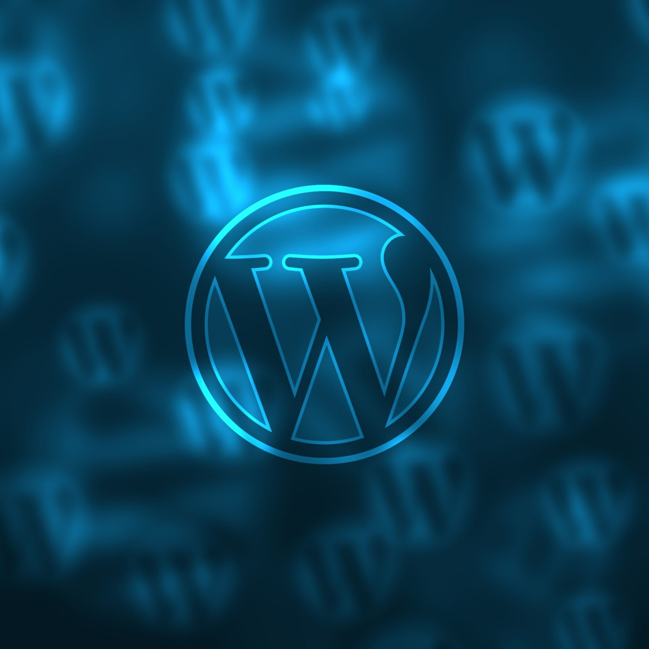 WordPress Websites and Hosting